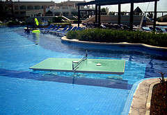 A Ping Pong Table in the Pool