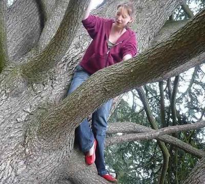 A Tree Climbing Dare Story